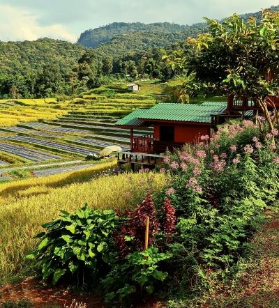 Thailand pic julie nariman