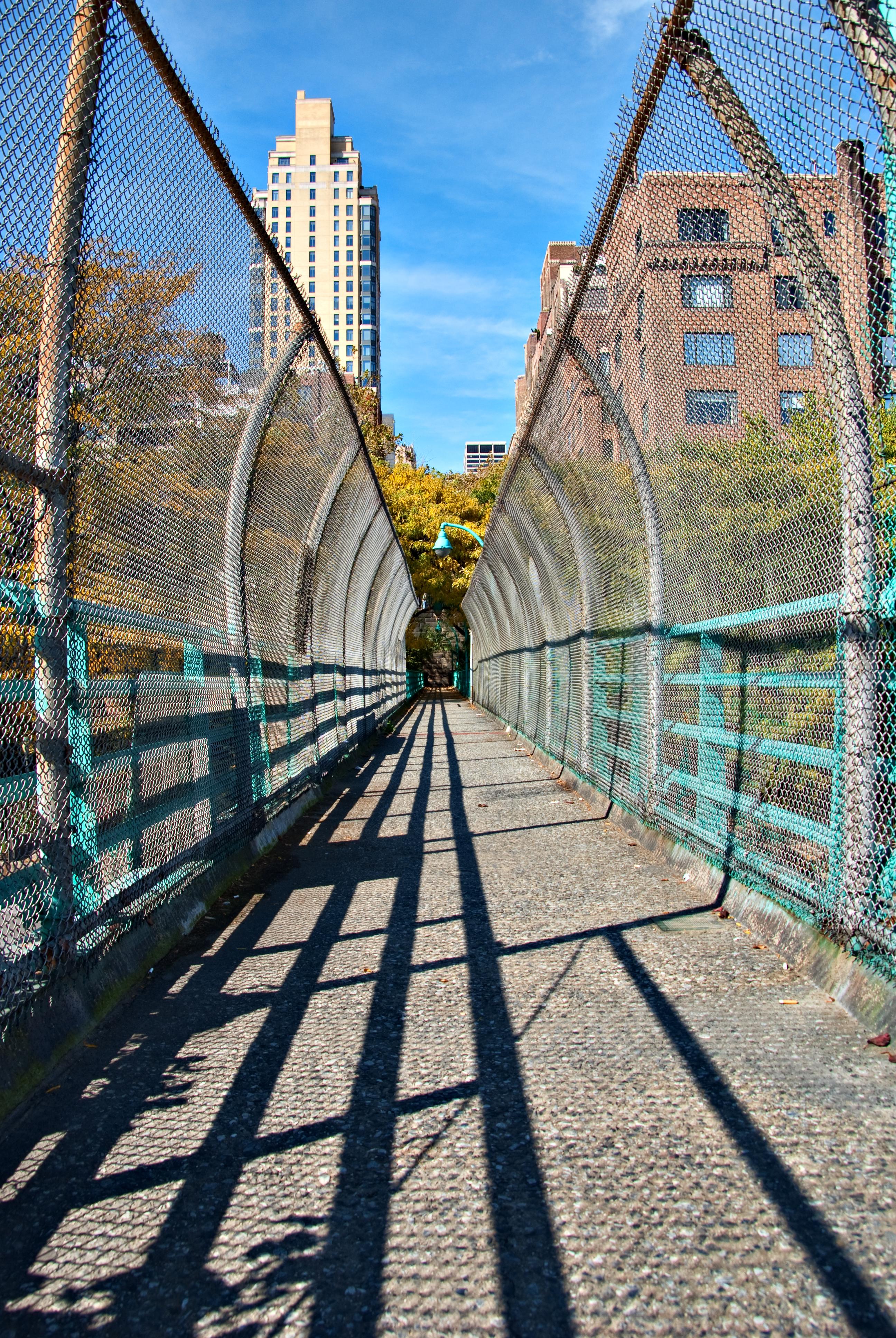 Bridge Ahmed blog